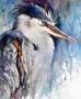 2015 Grumpy Heron 16x19 Tsm