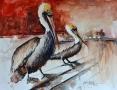 2018 Pair of Pelicans 17x22 sm